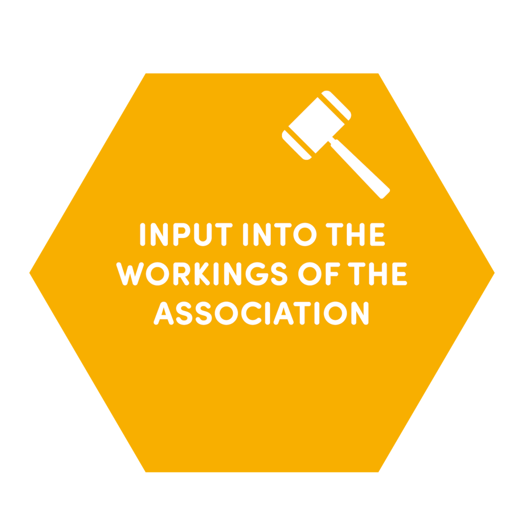 input-into-the-workings-of-the-association