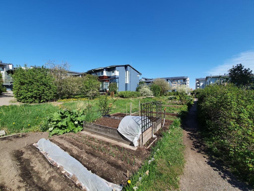 Søren Rasmussenin kuva puutarhasta