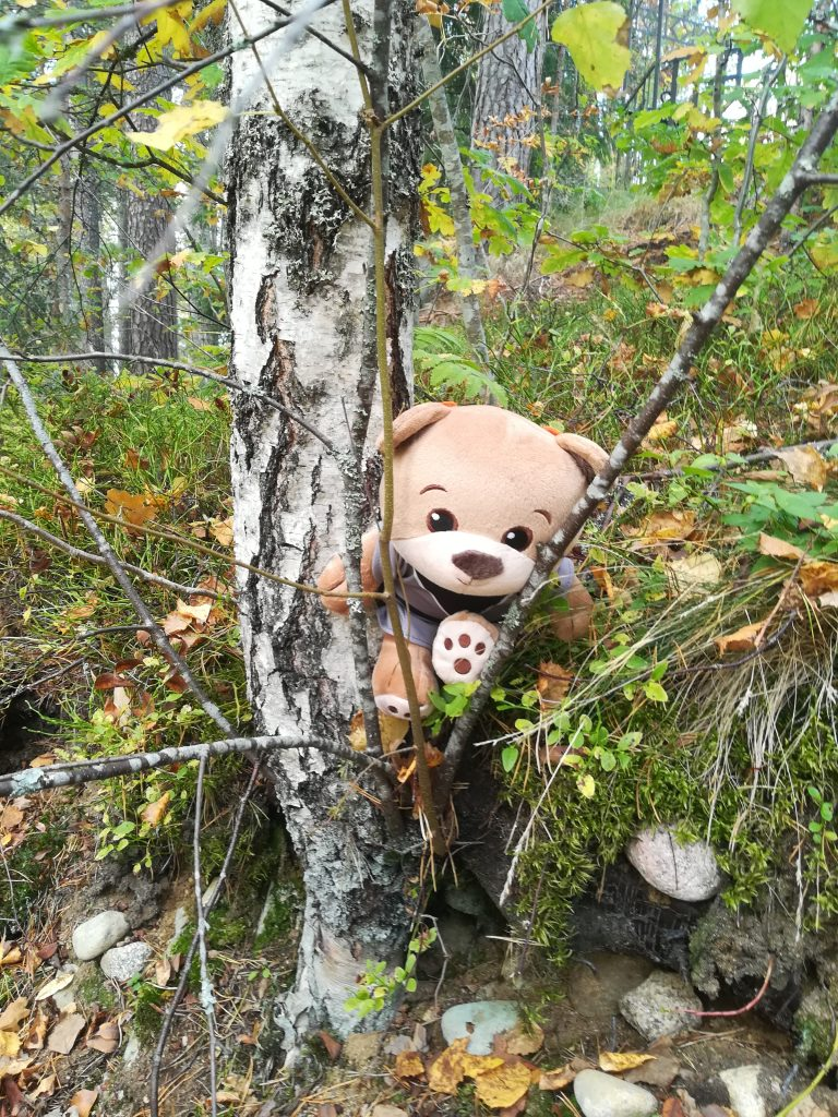 Kuvassa pehmonalle, joka on jäänyt puuhun kiinni