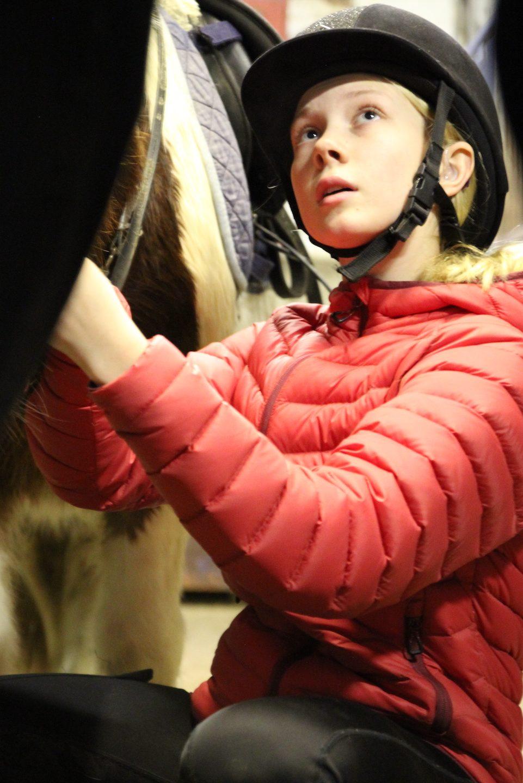Kuvassa nuori tyttö harjaa ponia