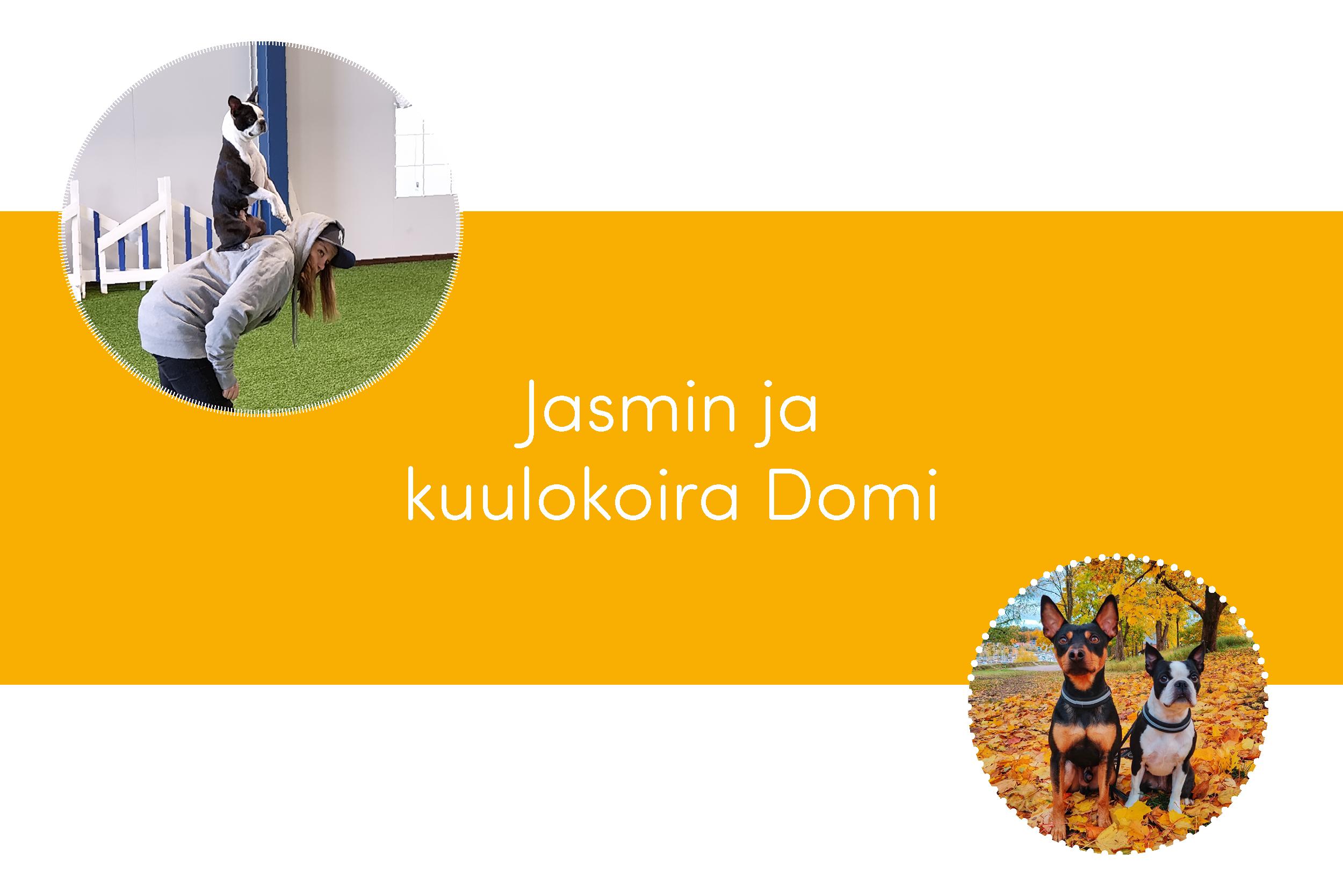 Kuvissa Jasu, Domi ja Miki. Kuvan keskellä lukee Jasmin ja kuulokoira Domi