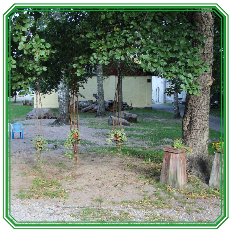 Kuvassa pajuista tehtyjä kukkaamppeleita nostettuna puita vasten
